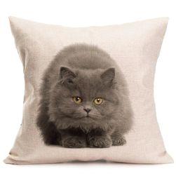 Față de pernă cu pisică - 6 variante