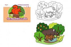 Kolorowanka ze zwierzętami Na łące pod lasem 21x15cm RM_10101320