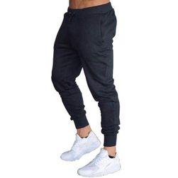 Męskie spodnie dresowe Raoul