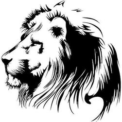 Nalepnica za auto - lav