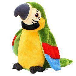 Konuşan papağan oyuncak ML41