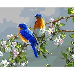 Slikanje po brojevima 40 x 50 cm - ptice