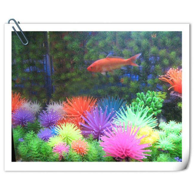 Dekorace do akvária korál - 6 barev 1