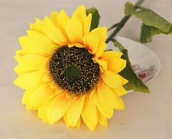 Művirág Sunny