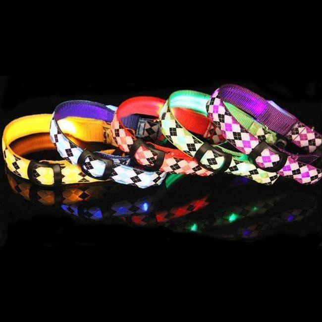 Svetleća LED ogrlica za pse 1