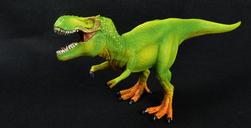 Tyrannosaurus rex - model