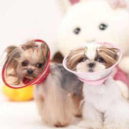 Ochranný límec pro menší psy