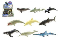 Zvieratká morská plast 6cm asst mix druhov RM_00410524
