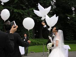 Balončići u obliku golubica