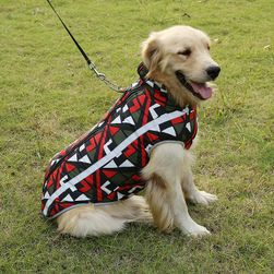 Köpek ceketi PAW01