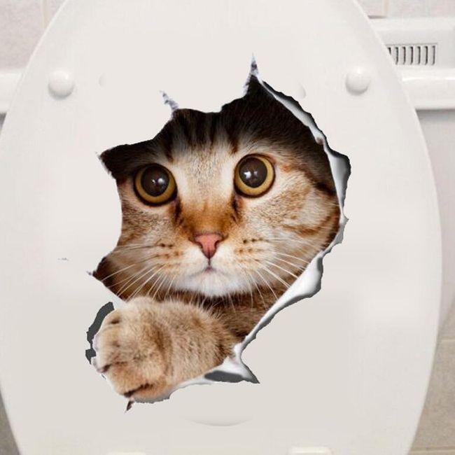 Kedi ile 3D çıkartma 1
