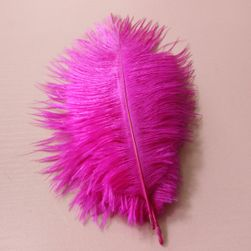 Щраусови цветни пера 15-20 см / 10 броя - различни цветове