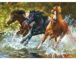Sada pro namalování vlastního obrazu - divocí koně