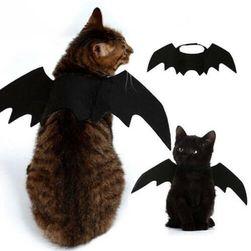 Kedi kostümü KPK86