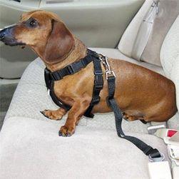 Sigurnosni pojas za pse - više boja