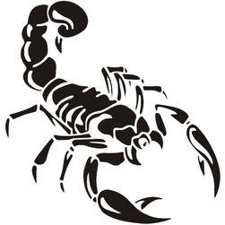 Autó matrica - skorpió