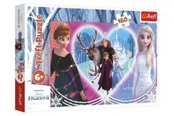 Maxi puzzle -Frozen II RM_89015408