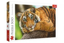 Puzzle Portrét tigra 500 dielikov 48x34cm v krabici 40x27x4,5cm RM_89037397