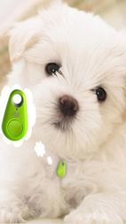 Bluetooth lokalizator psów i bagażu