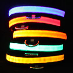 Svítící LED obojek pro domácí mazlíčky
