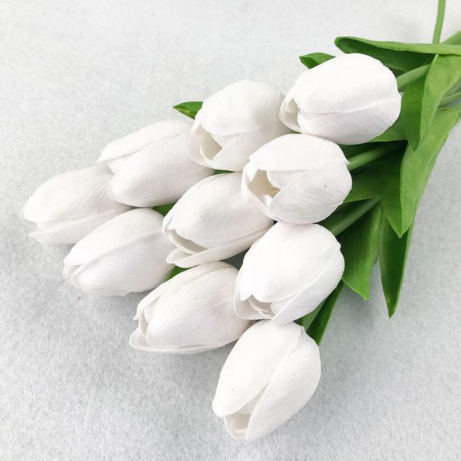 tulipán pénisz)
