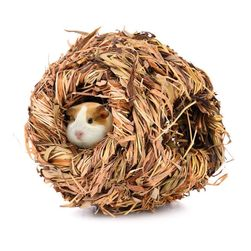 Hamster evi LA98