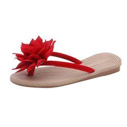 Ženske papuče Jimmie