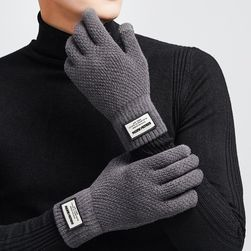 Erkek kışlık eldiven WG84