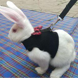 Vesta s vodítkem pro králíka