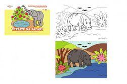 Kolorowanki - zwierzęta Witamy na safari 21x15cm  RM_10100620