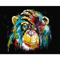 Malování podle čísel - pestrobarevný šimpanz