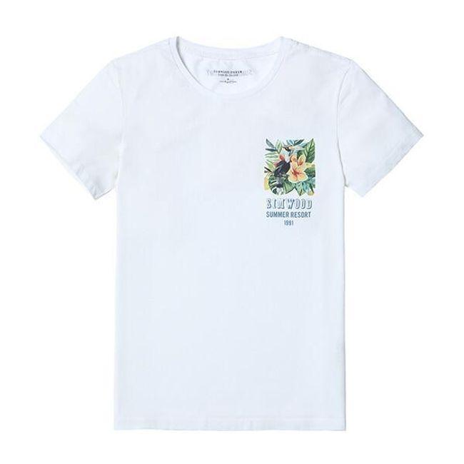 Pánské tričko Alvaro 1