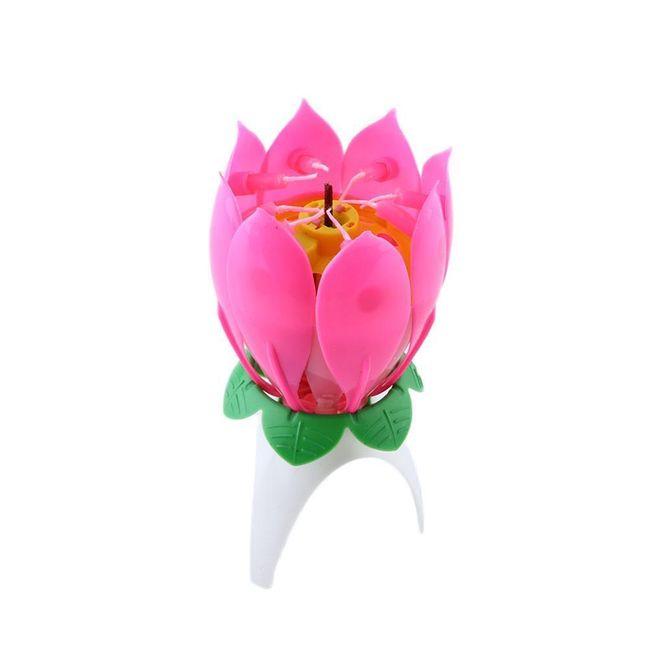 Hrající svíčková květina 1