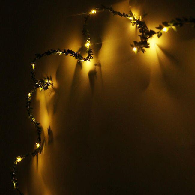 Girlanda s LED žárovičkami 1