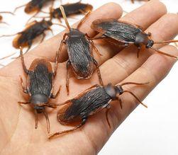 Sada umělých švábů - 12 kusů