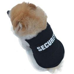 Smešna odeća za psa