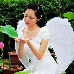 Ангелски крила към костюм