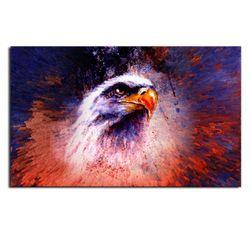 Bezrámový barevný obraz 75 x 50 cm - Hlava orla