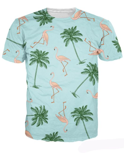 Мужская футболка с короткими рукавами Cash 1