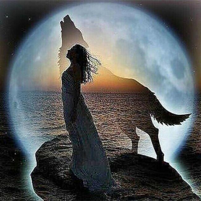 Dekle z volkom - slika iz kamnov 1
