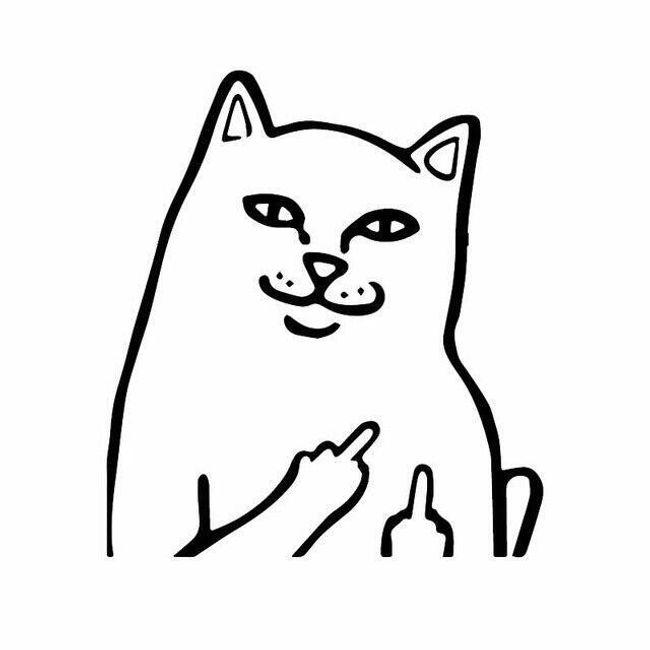 Naklejka na auto Cat 1