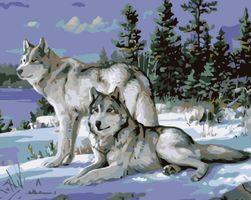 Számokkal történő festés - VLCI II OJ_KTMK-62293-40X50-PRV