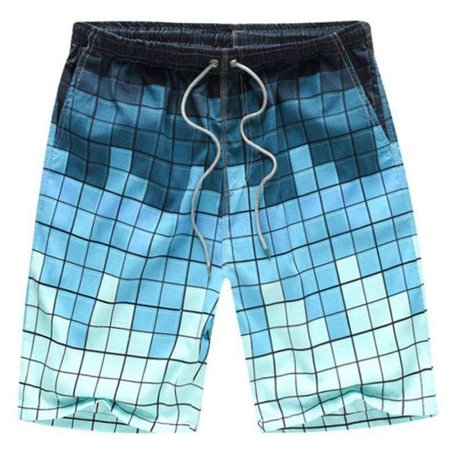 Pánské plážové šortky - různé barvy a velikosti 1