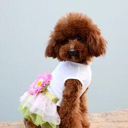 Šaty pro psa Audrey