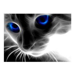 Imagine 5D cu pisică - 2 culori