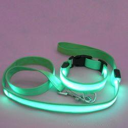 LED nyakörv és póráz készlet - 5 színben