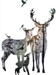 Samolepka na zeď - jelení rodina