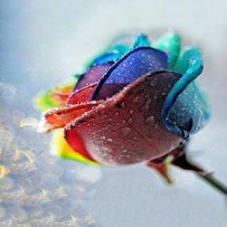 Růže 5D obraz s kamínky