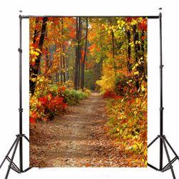 Ateliérové fotopozadí 2,1 x 1,5 m - Lesní cesta