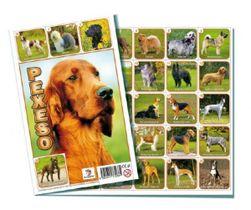 Pexeso Psi společenská hra 32 obrázkových dvojic RM_26002664